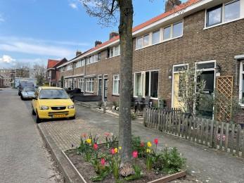 Populierenstraat, Zwolle