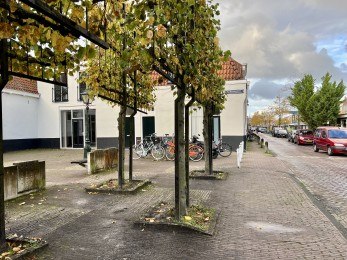 Utrechtse Veer, Leiden