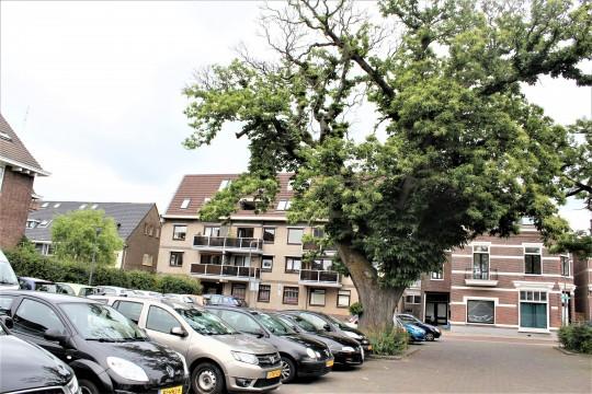 Oranjestraat, Velp Gld