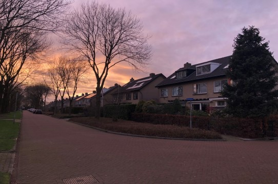 Reviuslaan, Zwolle