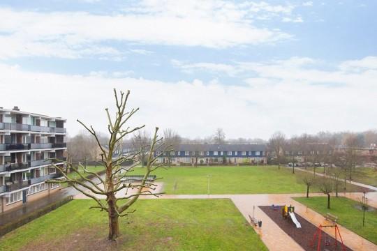 Loplein, Arnhem