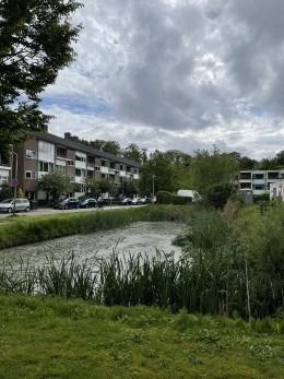 Bachweg, Amersfoort