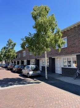 Frans Halsstraat, Zwolle