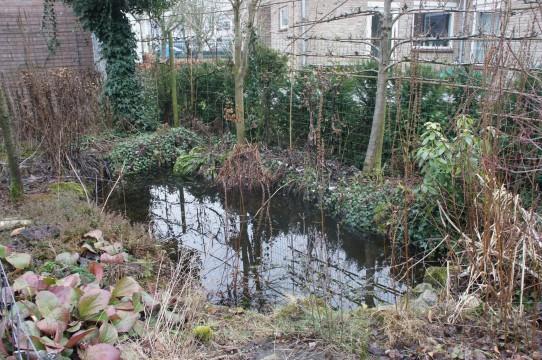 Prof. Keesomstraat, 's-Hertogenbosch
