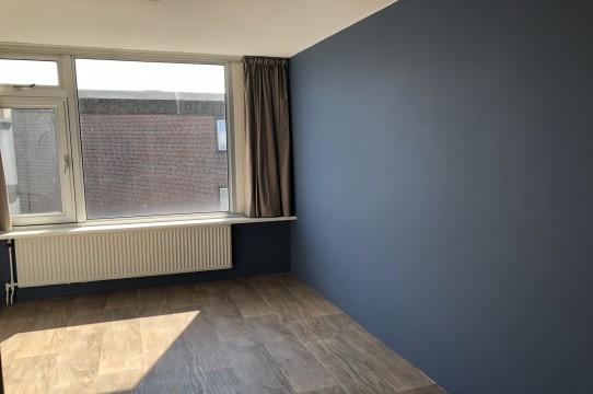 Leeuwenwerf, Amsterdam