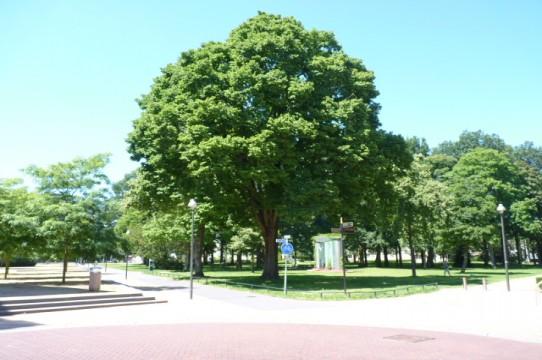 Beekpark, Apeldoorn