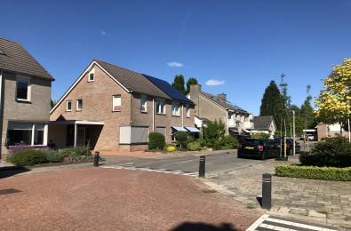 Ringmus, IJsselmuiden