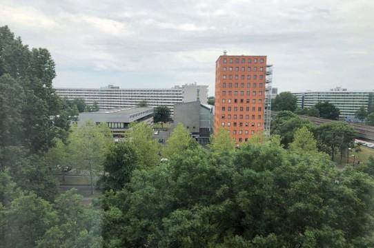 Gouden Leeuw, Amsterdam
