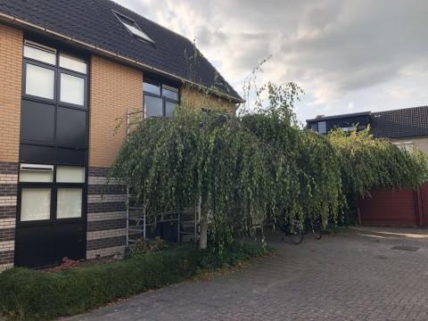 Nijenburg, Hoofddorp