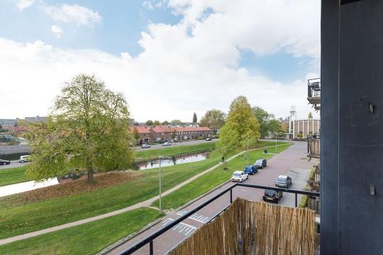 Lisdoddelaan, Arnhem