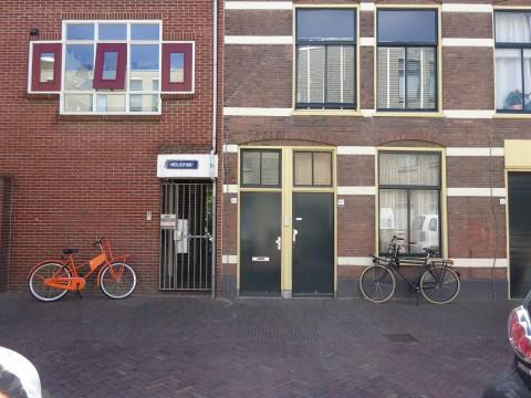 Van der Werfstraat, Leiden