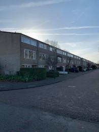 Cypressenlaan, Sint Michielsgestel