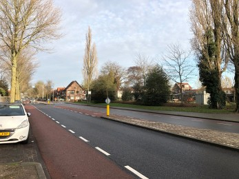 Zonnebloemstraat, Zwolle