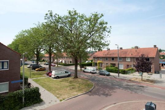 Sleutelbloemstraat, Arnhem