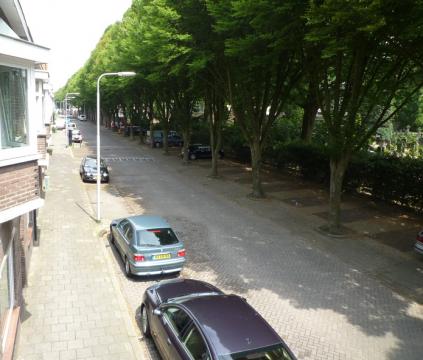 Wilgenstraat, Tilburg