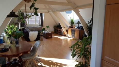 Appartement huren aan de Halvemaanstraat in 's-Hertogenbosch