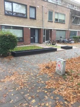 Lage Witsiebaan, Tilburg
